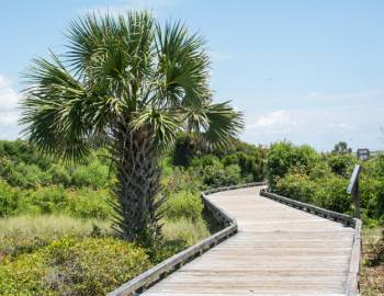 A walkway in Myrtle Beach State Park